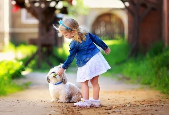 7 Raças de cães pequenos que são super amigáveis com as crianças