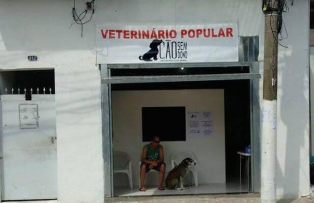 Clínica veterinária popular