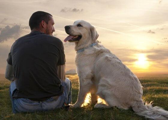 Conheça a história de como meu cachorro me ensinou a ser feliz