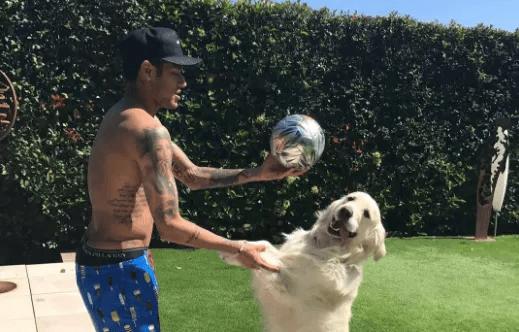 neymarjr jogando bola com seus cachorros