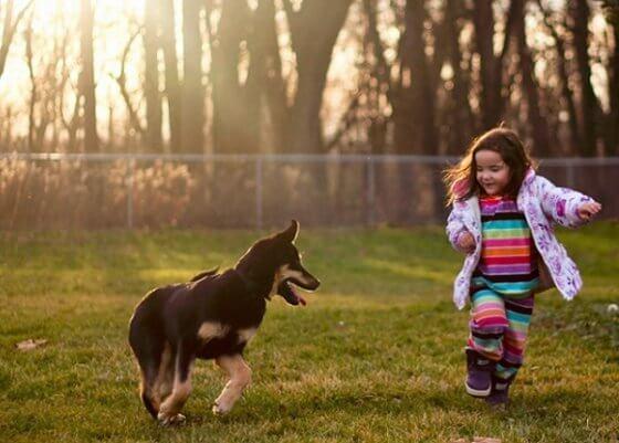 5 Lições de vida que as crianças aprendem com os cães