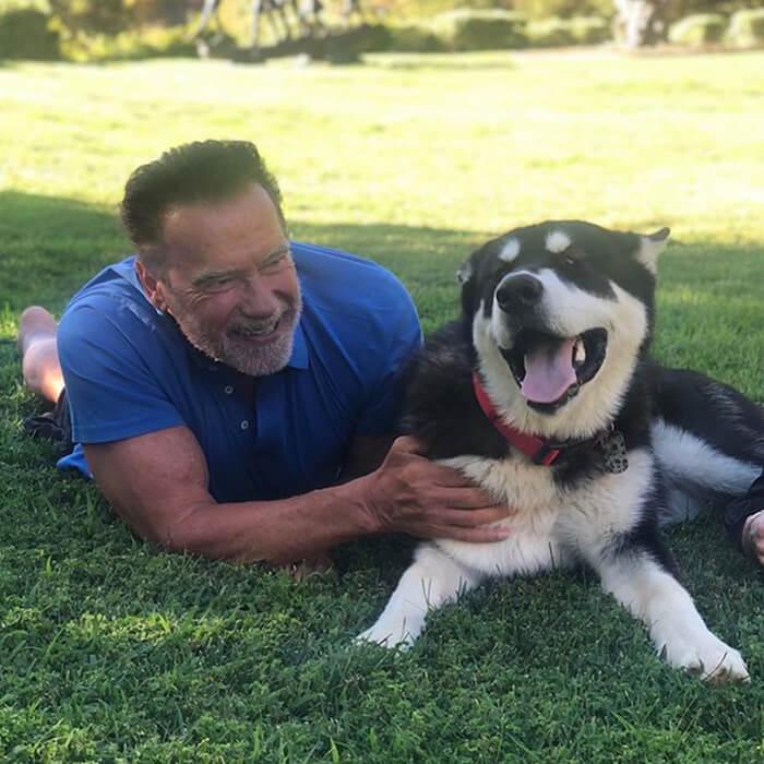 arnold com seu cachorro