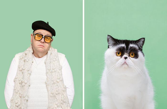 gato e dono parecidos
