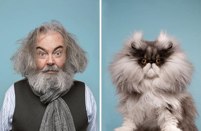 gatinho e homem parecidos