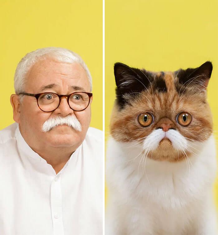 gato e homem parecidos