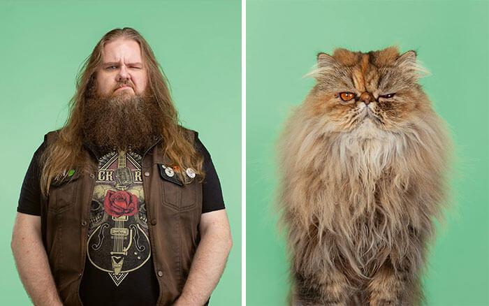 gatos e humanos idênticos